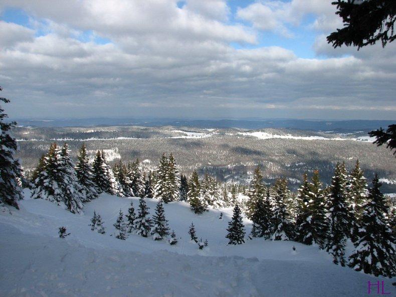 Au sommet de la Haute Chaine - Le Crêt de la Neige - 17/02/2010 0005