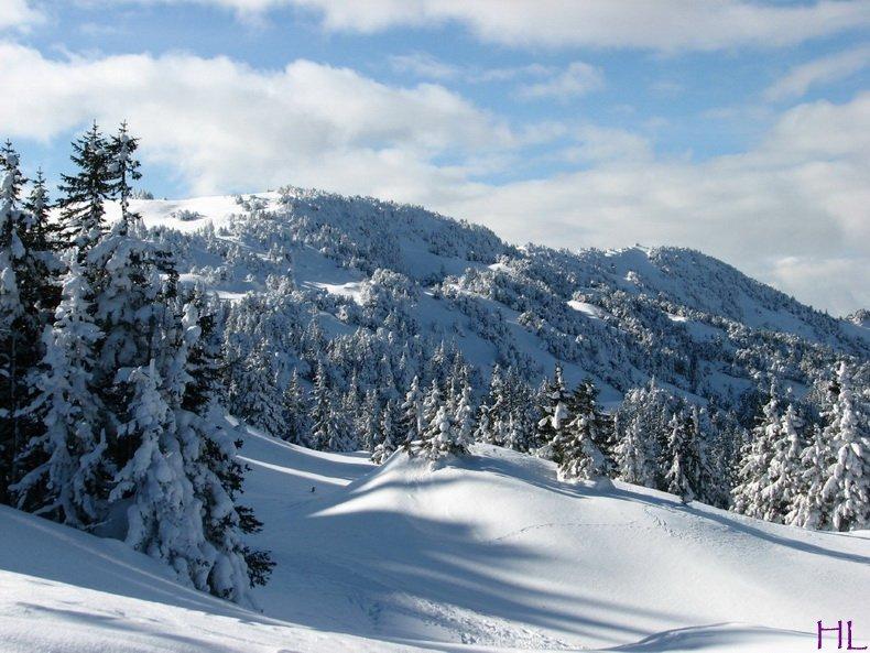 Au sommet de la Haute Chaine - Le Crêt de la Neige - 17/02/2010 0006
