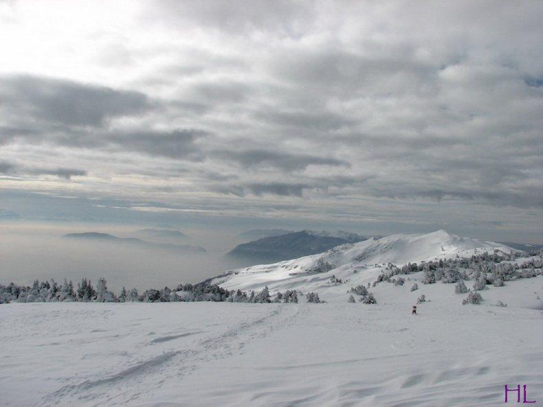 Au sommet de la Haute Chaine - Le Crêt de la Neige - 17/02/2010 0007