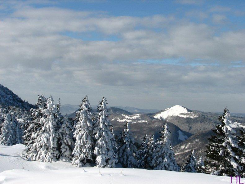 Au sommet de la Haute Chaine - Le Crêt de la Neige - 17/02/2010 0008