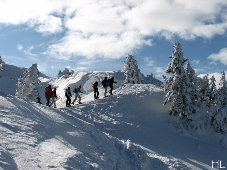 Au sommet de la Haute Chaine - Le Crêt de la Neige - 17/02/2010 0012