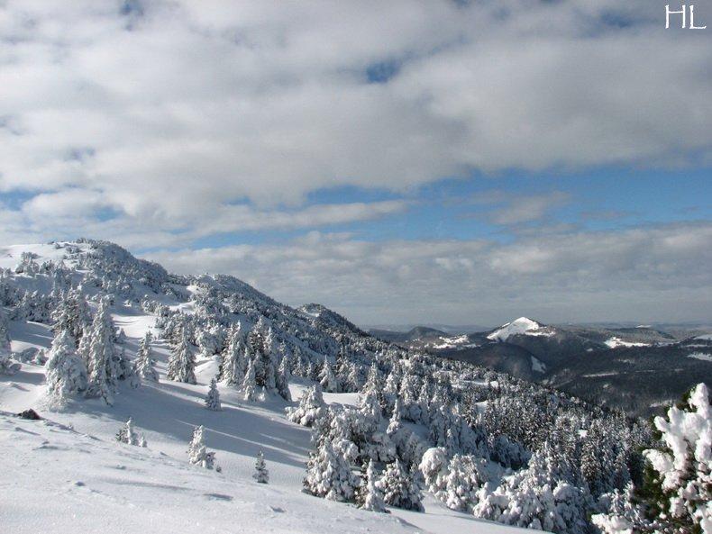 Au sommet de la Haute Chaine - Le Crêt de la Neige - 17/02/2010 0015