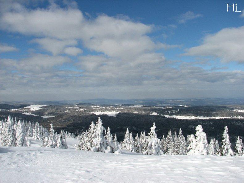 Au sommet de la Haute Chaine - Le Crêt de la Neige - 17/02/2010 0018