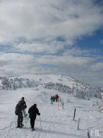 Au sommet de la Haute Chaine - Le Crêt de la Neige - 17/02/2010 0019