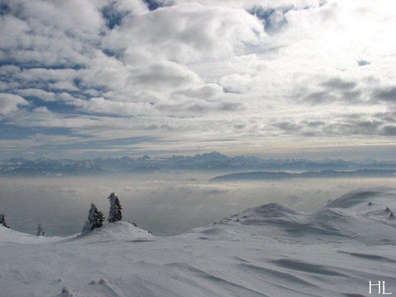 Au sommet de la Haute Chaine - Le Crêt de la Neige - 17/02/2010 0020