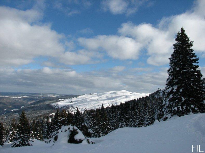 Au sommet de la Haute Chaine - Le Crêt de la Neige - 17/02/2010 0022