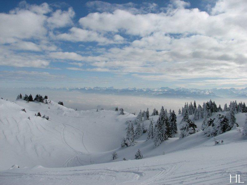 Au sommet de la Haute Chaine - Le Crêt de la Neige - 17/02/2010 0024