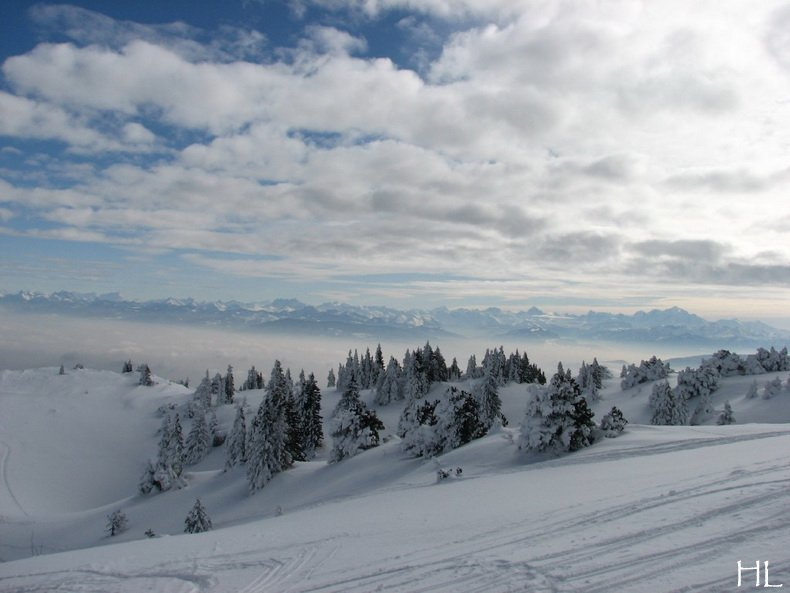 Au sommet de la Haute Chaine - Le Crêt de la Neige - 17/02/2010 0025