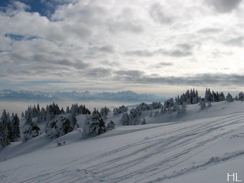 Au sommet de la Haute Chaine - Le Crêt de la Neige - 17/02/2010 0026