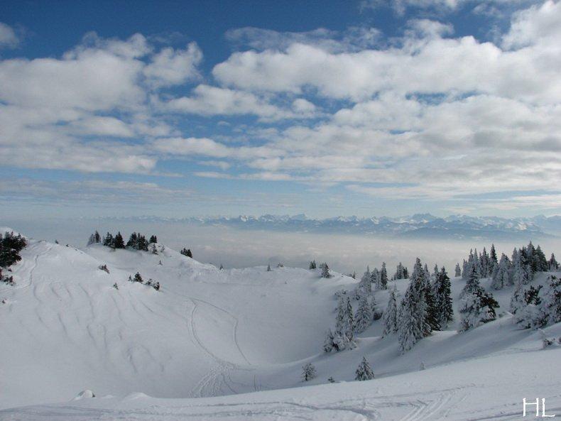 Au sommet de la Haute Chaine - Le Crêt de la Neige - 17/02/2010 0027