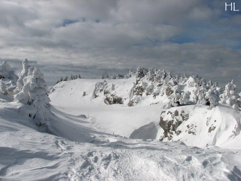 Au sommet de la Haute Chaine - Le Crêt de la Neige - 17/02/2010 0028
