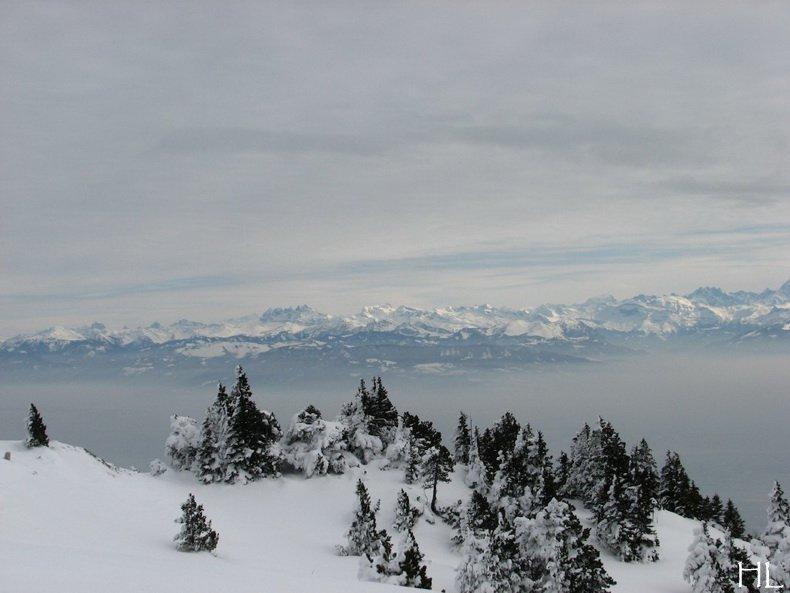 Au sommet de la Haute Chaine - Le Crêt de la Neige - 17/02/2010 0029