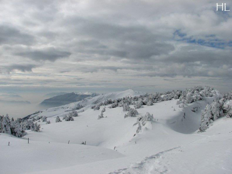 Au sommet de la Haute Chaine - Le Crêt de la Neige - 17/02/2010 0030