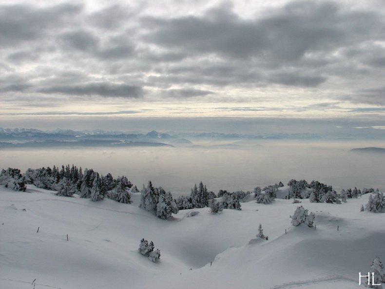 Au sommet de la Haute Chaine - Le Crêt de la Neige - 17/02/2010 0032