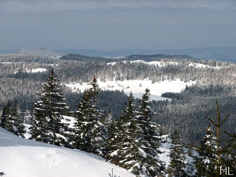 Au sommet de la Haute Chaine - Le Crêt de la Neige - 17/02/2010 0033