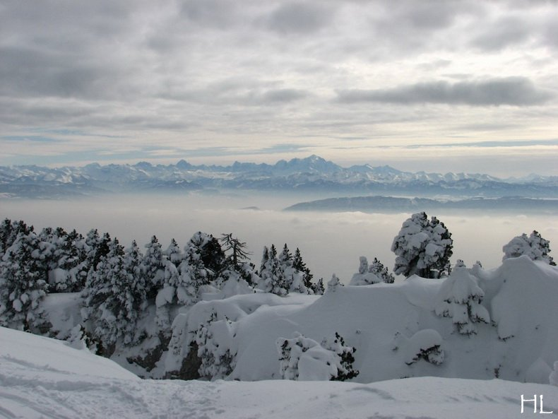 Au sommet de la Haute Chaine - Le Crêt de la Neige - 17/02/2010 0034