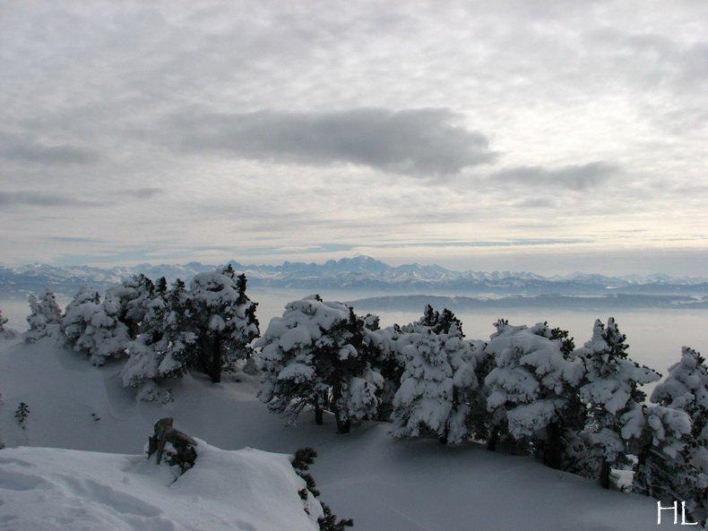 Au sommet de la Haute Chaine - Le Crêt de la Neige - 17/02/2010 0036