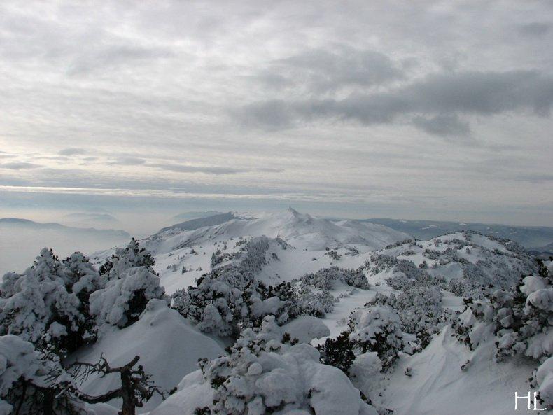 Au sommet de la Haute Chaine - Le Crêt de la Neige - 17/02/2010 0038