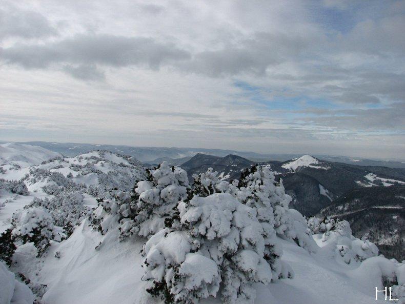 Au sommet de la Haute Chaine - Le Crêt de la Neige - 17/02/2010 0039