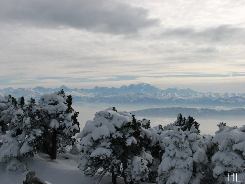 Au sommet de la Haute Chaine - Le Crêt de la Neige - 17/02/2010 0040