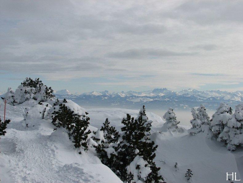 Au sommet de la Haute Chaine - Le Crêt de la Neige - 17/02/2010 0041