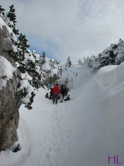 Au sommet de la Haute Chaine - Le Crêt de la Neige - 17/02/2010 0042