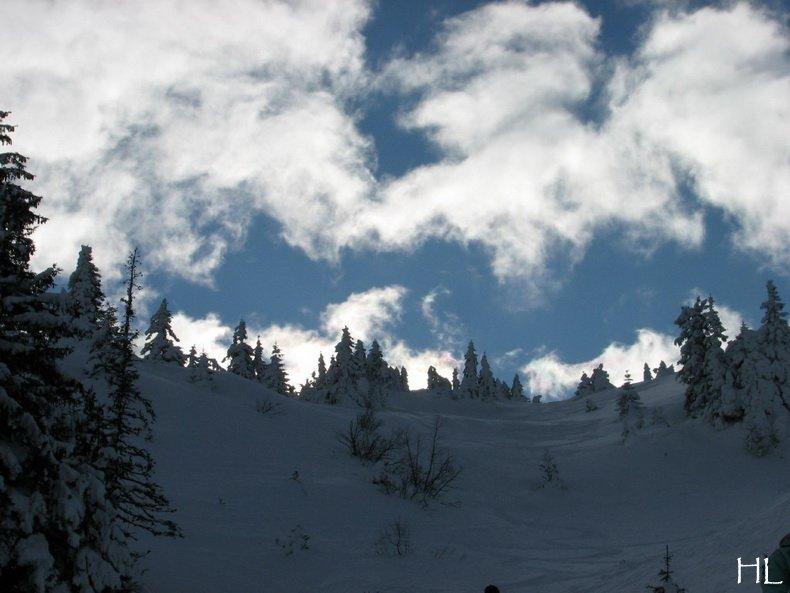 Au sommet de la Haute Chaine - Le Crêt de la Neige - 17/02/2010 0044