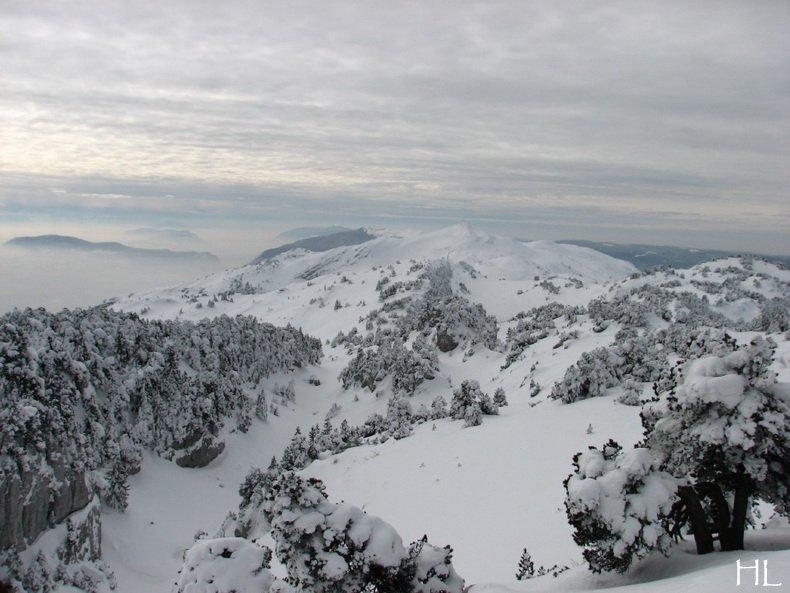 Au sommet de la Haute Chaine - Le Crêt de la Neige - 17/02/2010 0045