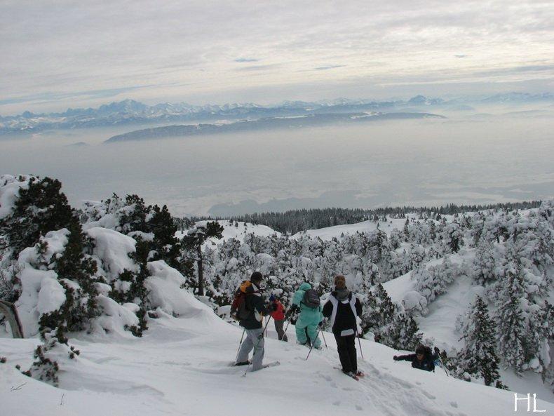 Au sommet de la Haute Chaine - Le Crêt de la Neige - 17/02/2010 0046