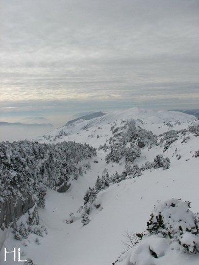 Au sommet de la Haute Chaine - Le Crêt de la Neige - 17/02/2010 0047