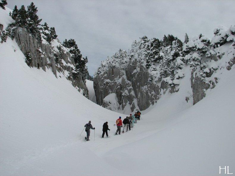 Au sommet de la Haute Chaine - Le Crêt de la Neige - 17/02/2010 0049