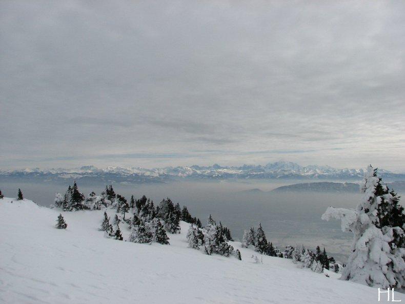 Au sommet de la Haute Chaine - Le Crêt de la Neige - 17/02/2010 0051