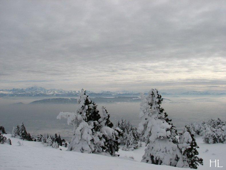 Au sommet de la Haute Chaine - Le Crêt de la Neige - 17/02/2010 0052
