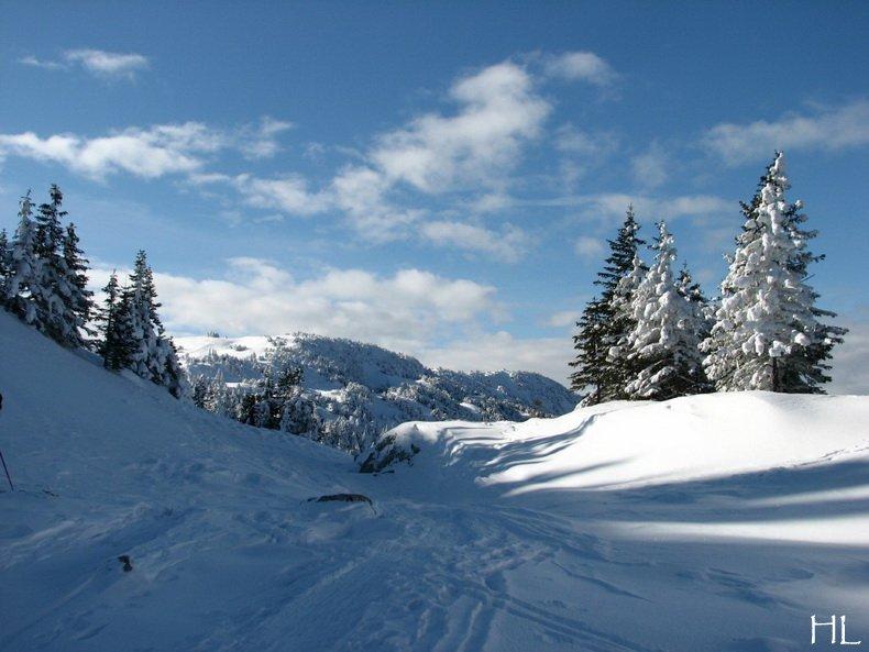 Au sommet de la Haute Chaine - Le Crêt de la Neige - 17/02/2010 0053