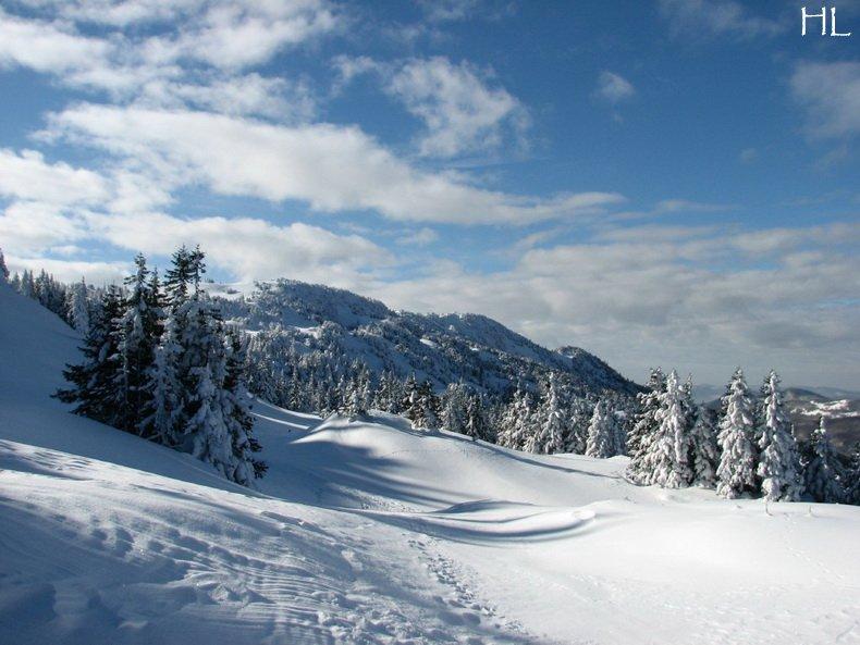 Au sommet de la Haute Chaine - Le Crêt de la Neige - 17/02/2010 0055