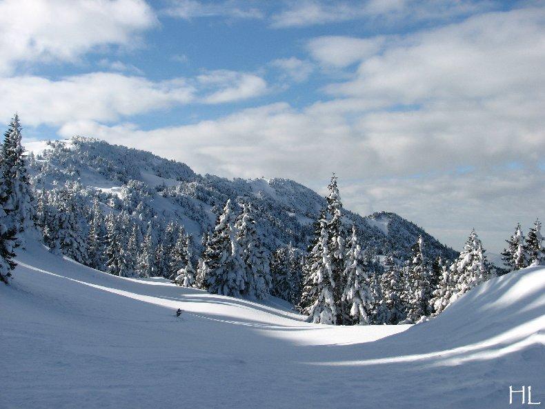 Au sommet de la Haute Chaine - Le Crêt de la Neige - 17/02/2010 0056
