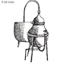 La Gentiane - Fleurs, Racines et Distillation - (25) 0009A