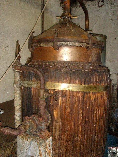 La Gentiane - Fleurs, Racines et Distillation - (25) 0010