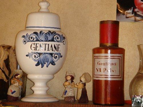 La Gentiane - Fleurs, Racines et Distillation - (25) 0015