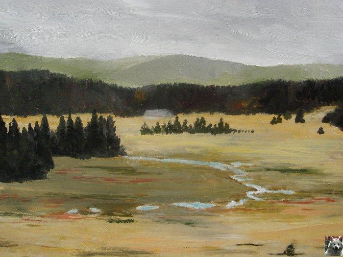 2 ème Picturales  : 2007-08-16 : Longchaumois (39) 0026