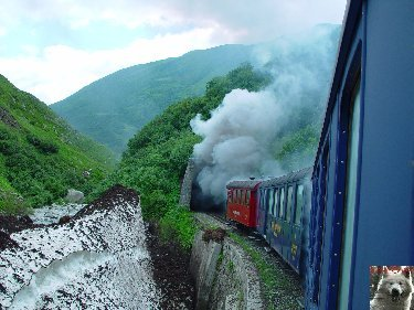 La Furka Bergstrecke ( Entre Uri et Valais ) 0031
