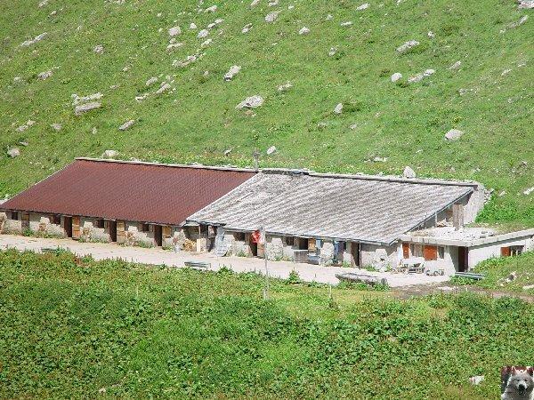 La Furka Bergstrecke ( Entre Uri et Valais ) 0067