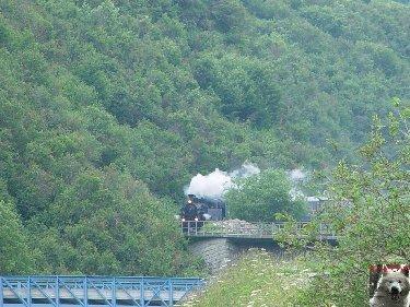 La Furka Bergstrecke ( Entre Uri et Valais ) 0105