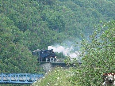 La Furka Bergstrecke ( Entre Uri et Valais ) 0106