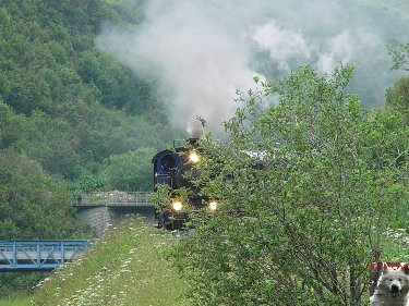 La Furka Bergstrecke ( Entre Uri et Valais ) 0108