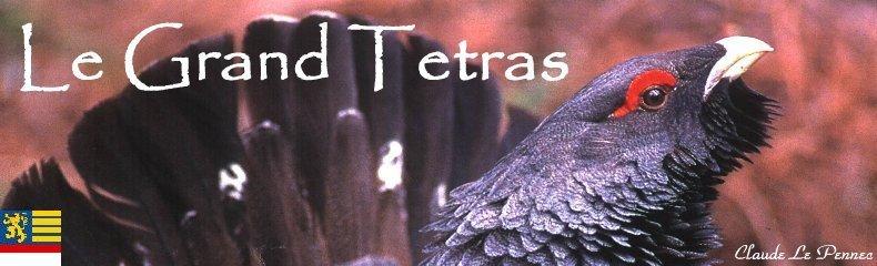 Le Grand Tétras - symbole mythique d'une nature préservée Logo