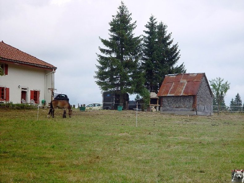 Les Greniers Forts 0028