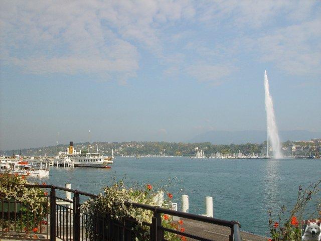 18 Juillet 2007 - Genève - Jet de sang pour le Darfour 0023