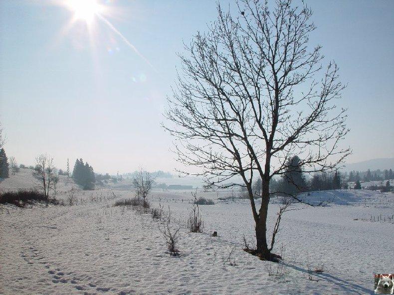 [39] : Le Lac de l'Abbaye - Grande Rivière 0002
