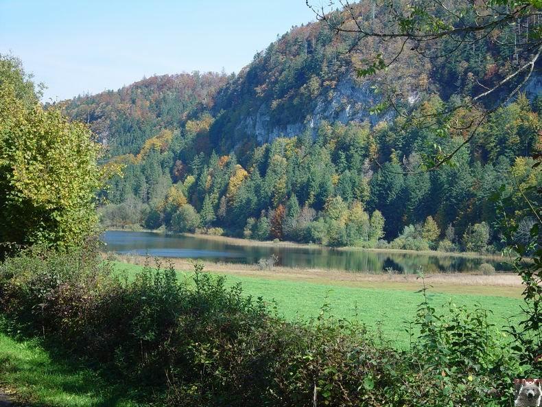 Le lac d'Etival (39) 0003